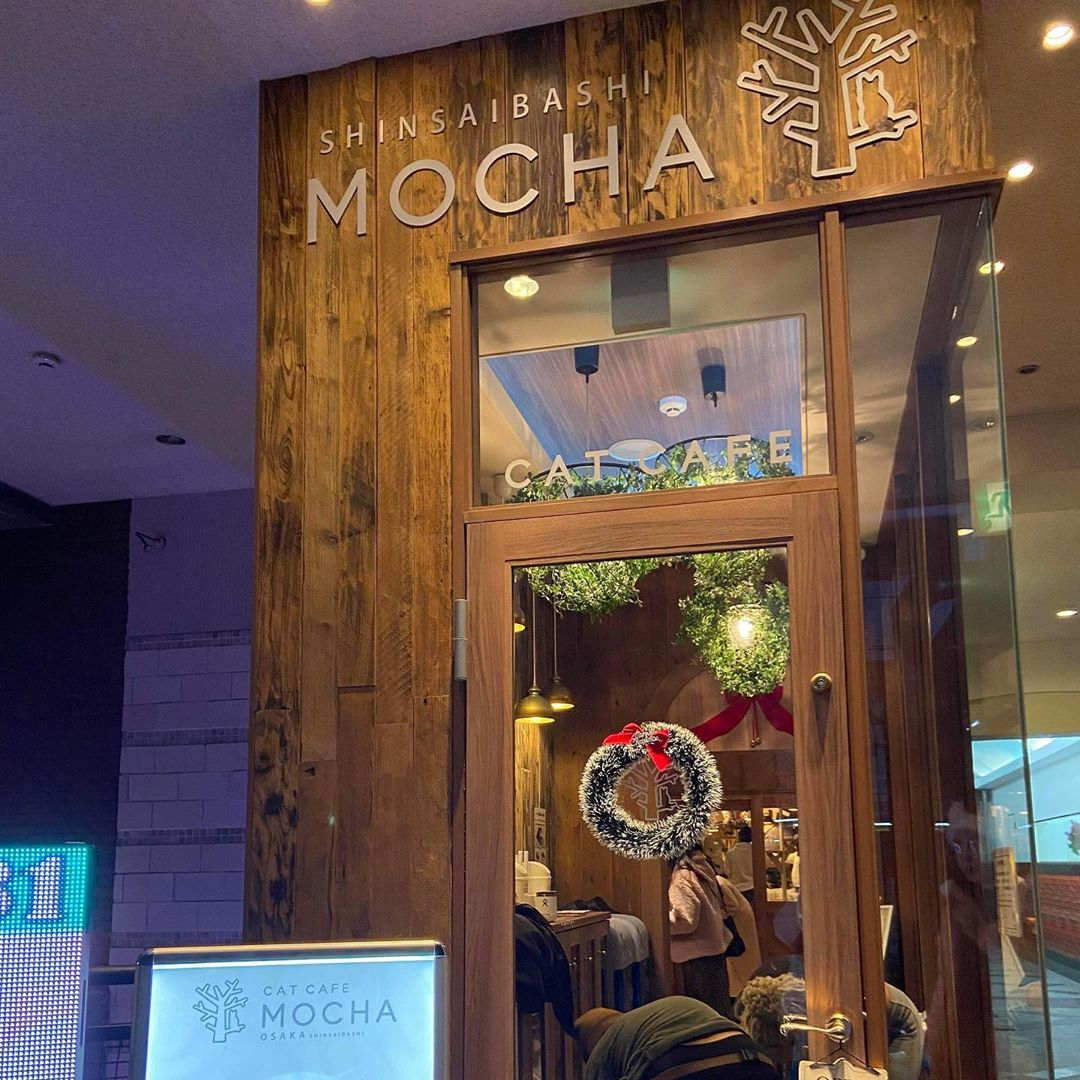 Cat Cafe Mocha Entrance