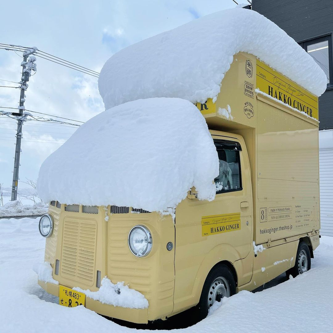 snow topped Hakko Ginger Van
