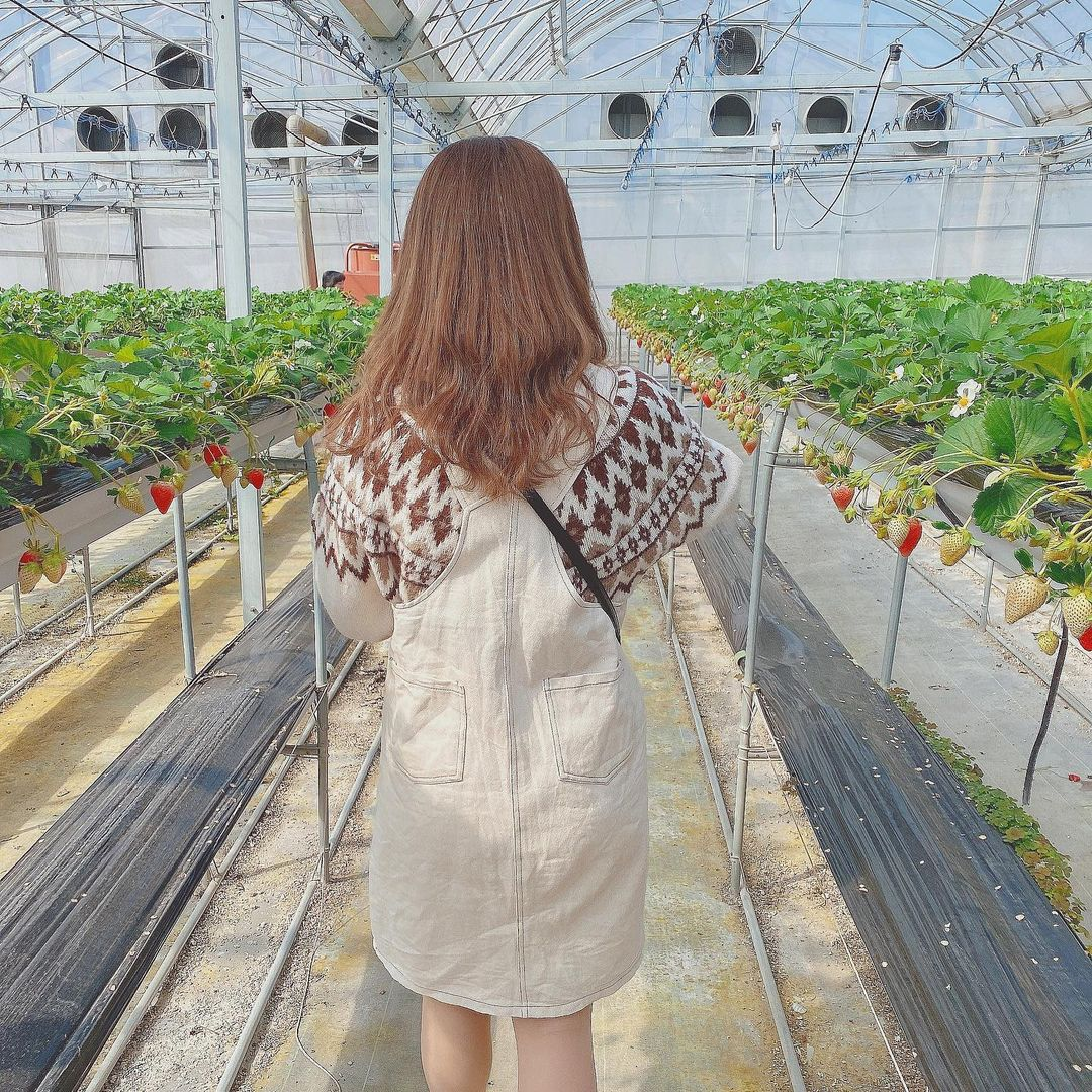 Izu Fruit Park greenhouse